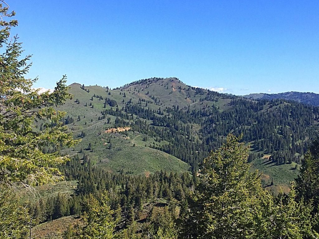 Iron Mountain from Monroe Butte.