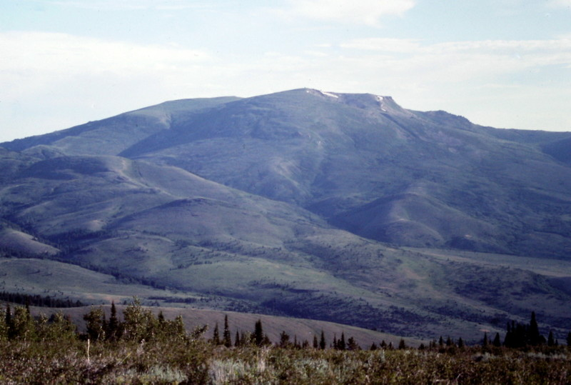 Mount Harrison's western slopes.