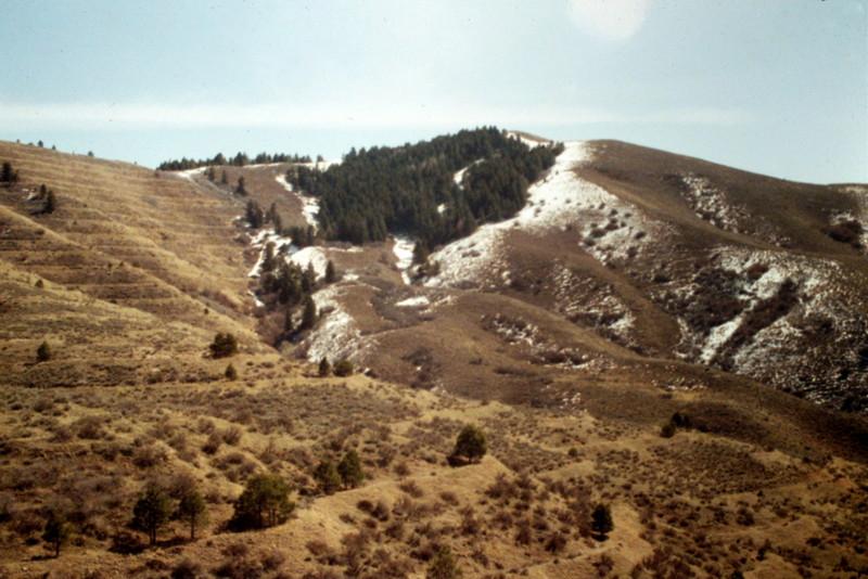 Shaw Mountain.