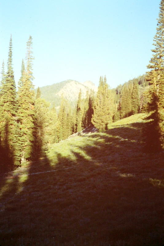 This photo gives you an idea of the terrain along the Big Baldy Ridge Trail.