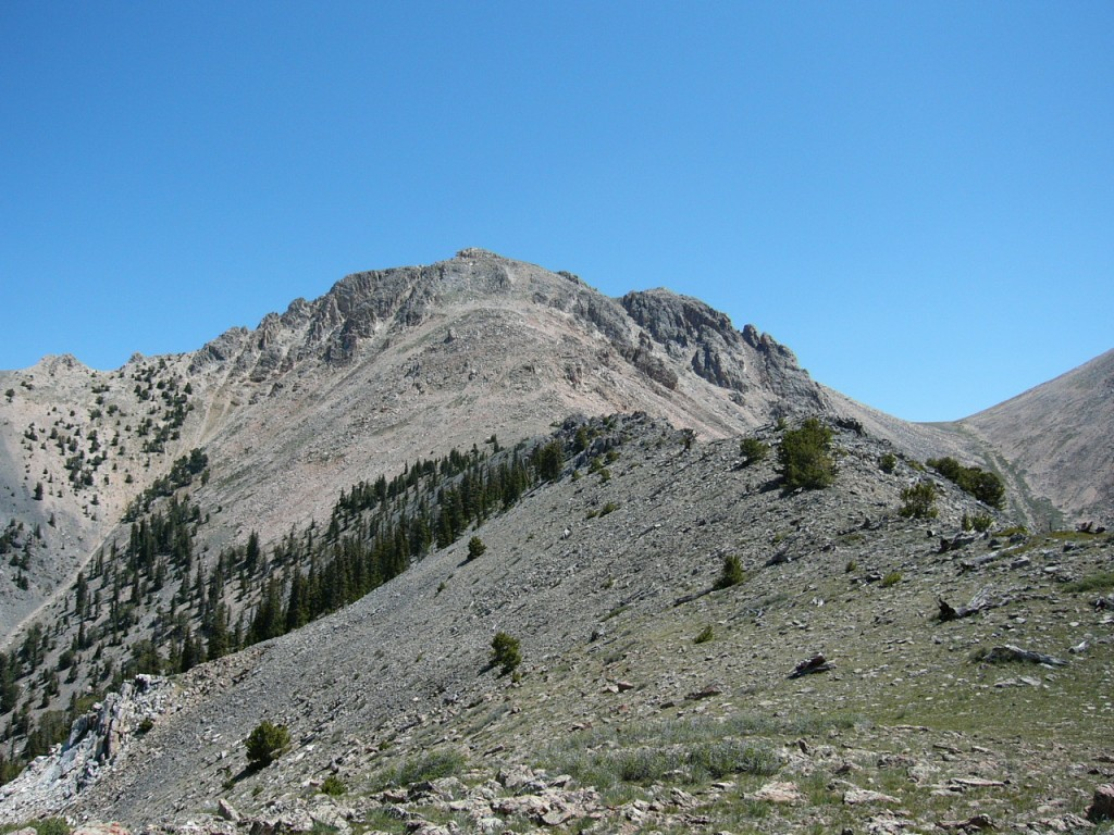 The Summit Block of Nicholson Peak.