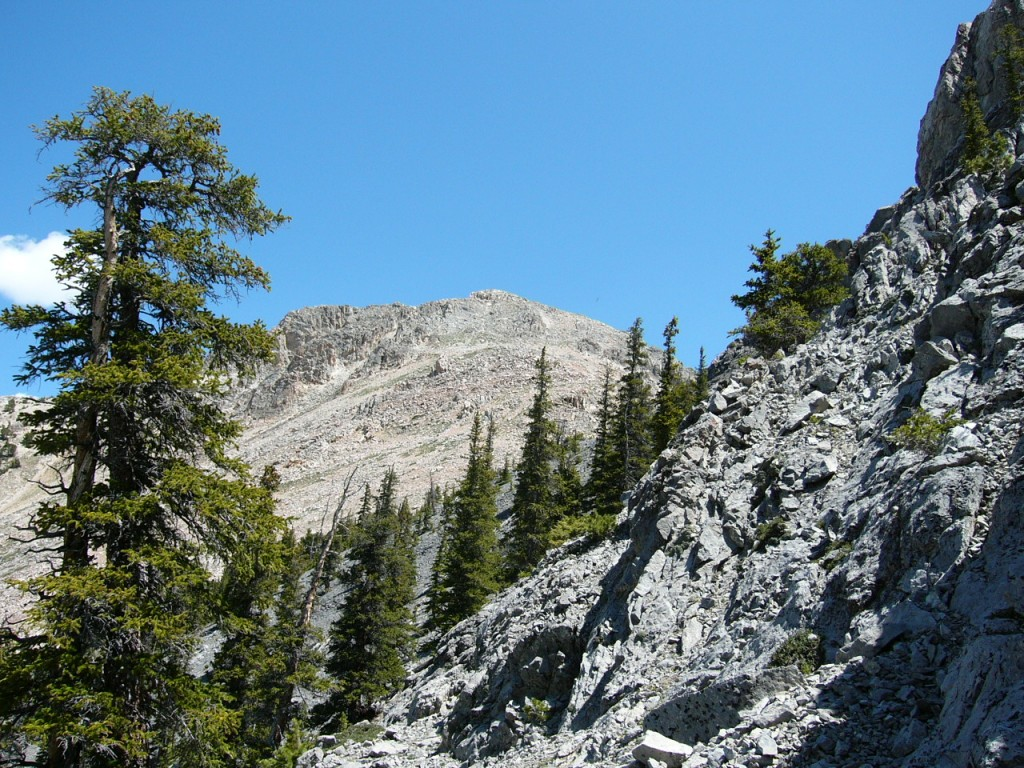 The upper section of southwest ridge of Nicholson.