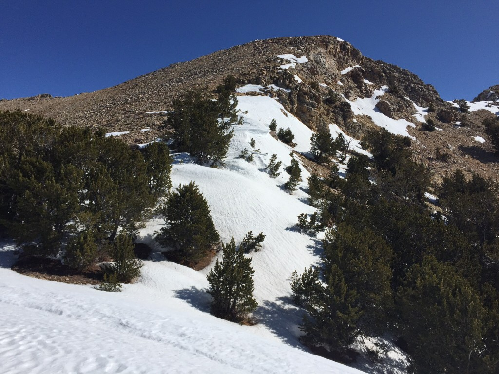 Looking up to the summit.