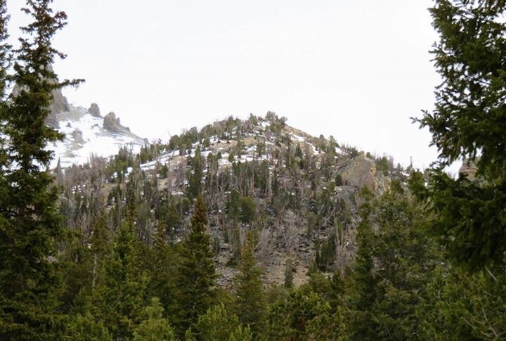 The route continues up this slope and eventually reaches treeline. Dan Paulson Photo