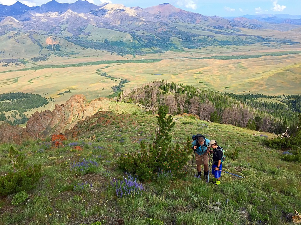 Looking down the west ridge. Larry and Ben Prescott are admiring the some of the many wildflowers blanketing the ridge.