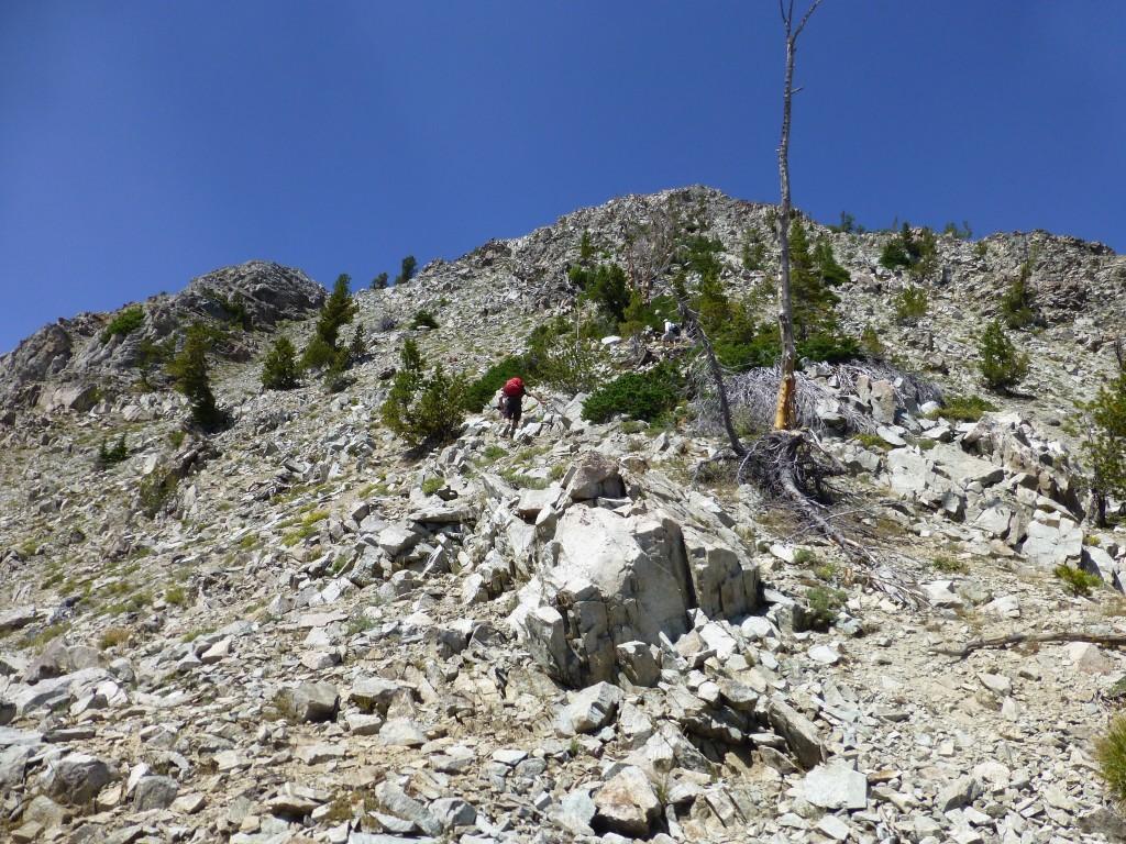 Climbing up the southeast rib. Dan Robbins Photo