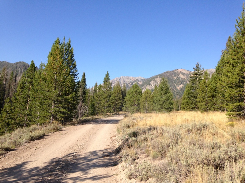 The road up Prairie Creek is well graded for its entire 3 mile course.