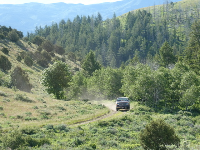 BLM-614 has its share of steep, rutted patches as it climbs up to the high ridges.