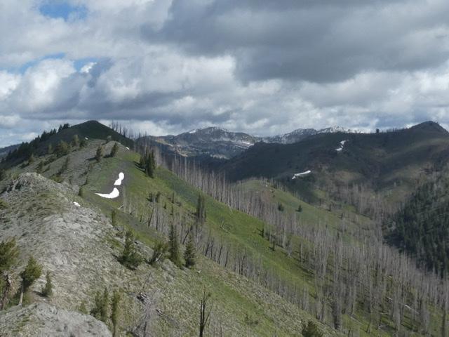 The summit ridge of Dollarhide Mountain.