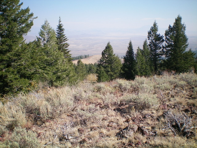 Looking down the east ridge of Sheep Mountain from near the summit. Livingston Douglas Photo