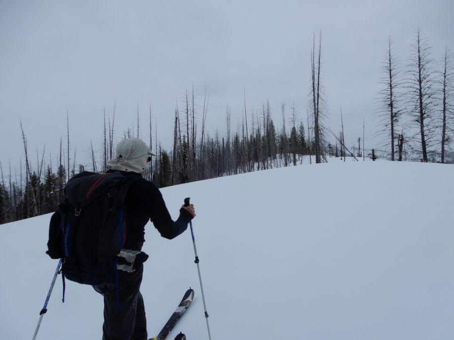 Approaching the summit. John Platt Photo