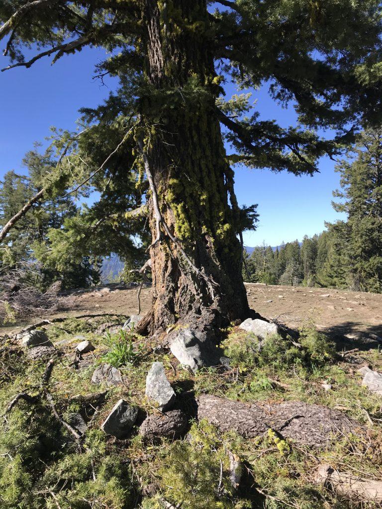 Peak 7164 Skunk Creek Peak