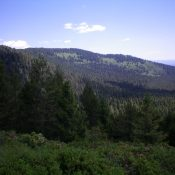 Thurmon Ridge (partially forested, in center at a distance) as viewed from the southwest. Livingston Douglas Photo