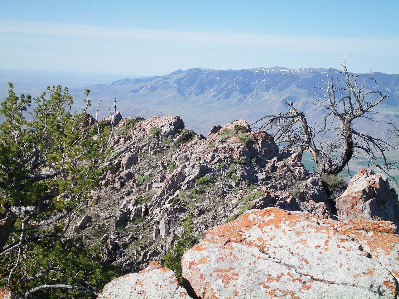 The rocky ridge-crest summit area of Peak 9044. Livingston Douglas Photo