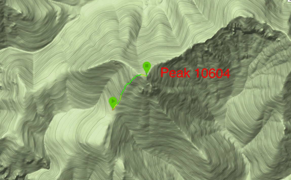 Larry Prescott's GPS track up the southwest rib.