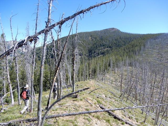 Peak 8860 (Center Ridge #2) viewed from the south. John Platt Photo