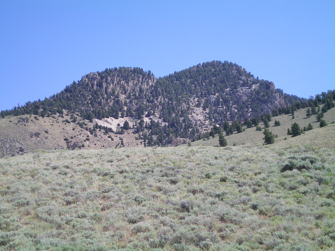 Foss Mountain as viewed from the sagebrush at the mouth of the canyon WSW of the peak. The right hump is the summit. The left hump is a bump on the West Ridge. Livingston Douglas Photo