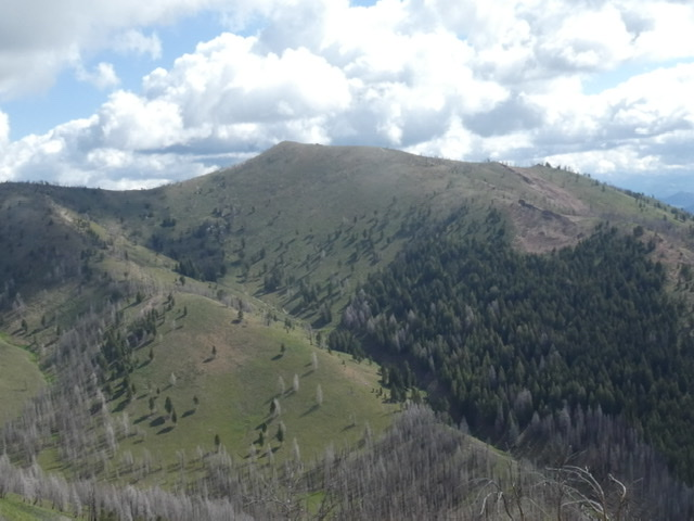 Shaw Mountain viewed from Dollarhide Mountain.