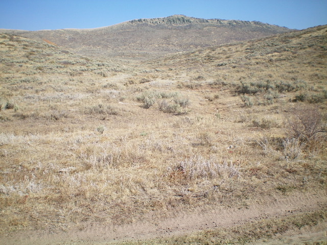 This is the base of the draw, as viewed from the 2-track jeep road. Leave the road here and begin the off-trail bushwhack to the top of Sugarloaf Mountain. The summit is in dead-center. Livingston Douglas Photo