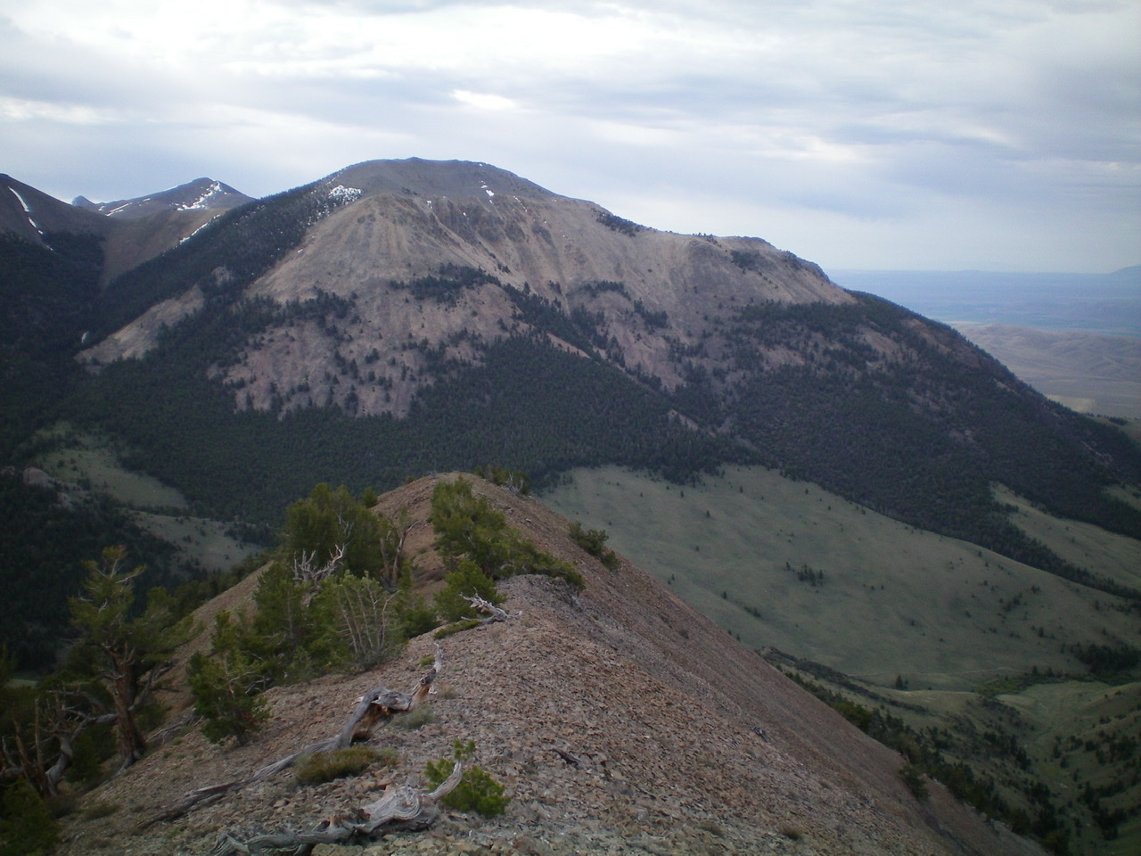Buckhorn Peak is the mountain in the foreground. The rugged West Face is center and right of center with a massive gully at its base. The upper section of the ridge is steep and rocky and goes at Class 3. Livingston Douglas Photo