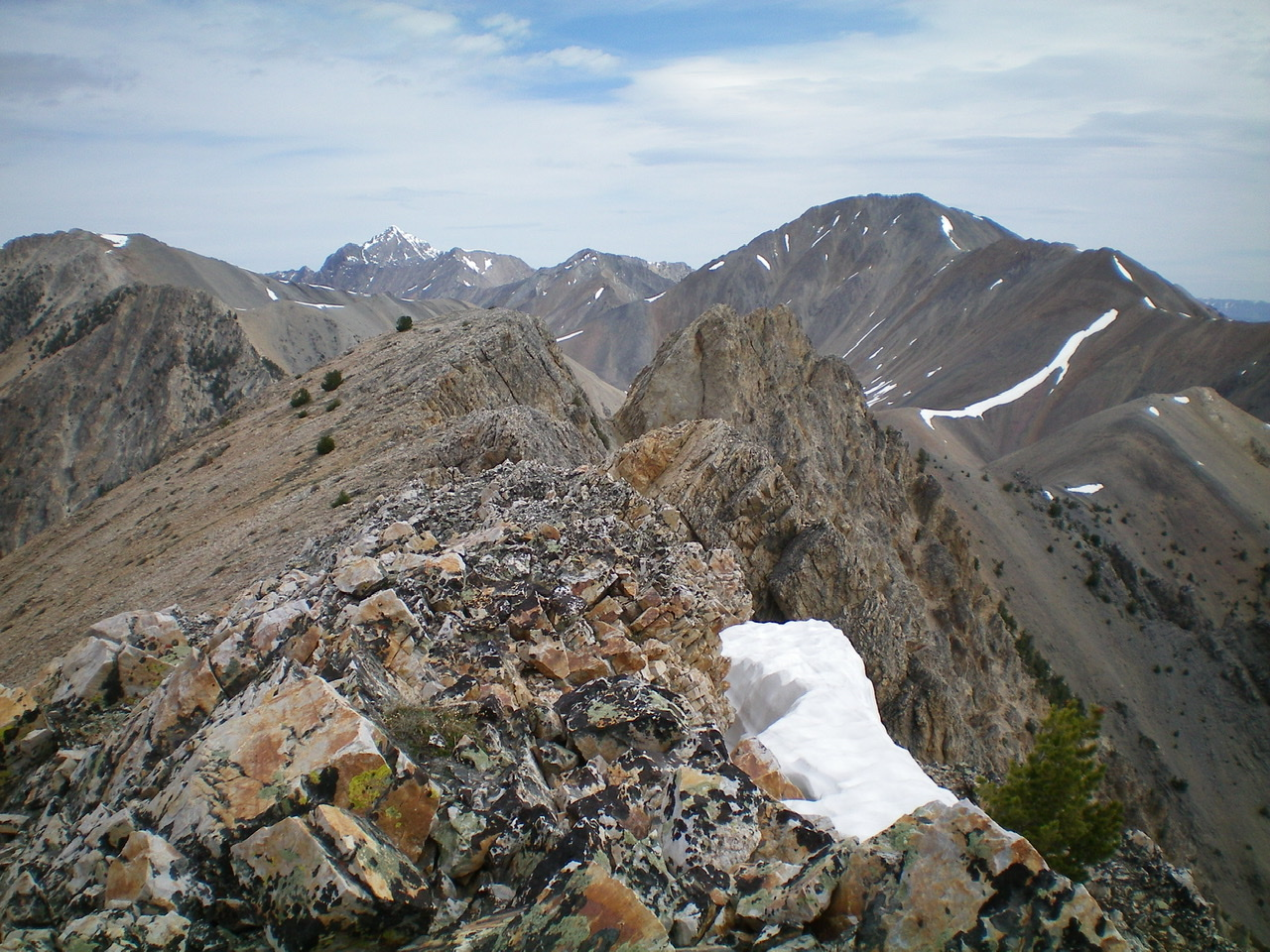 The summit ridge area of Sunny Bar Peak, looking NNE from the South Summit. Livingston Douglas Photo