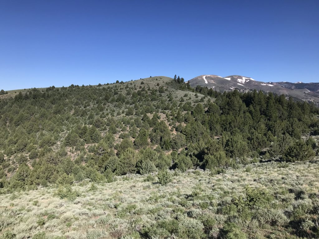 Mercury Peak with the ATV track climbing up from right to left and Quicksilver Mountain on the right.