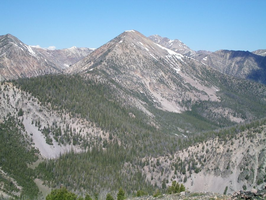 Peak 10263 (dead-center) as viewed from Peak 9523. The Southeast Ridge rises from a flat, forested section (left of center) to climb to the summit. Livingston Douglas Photo