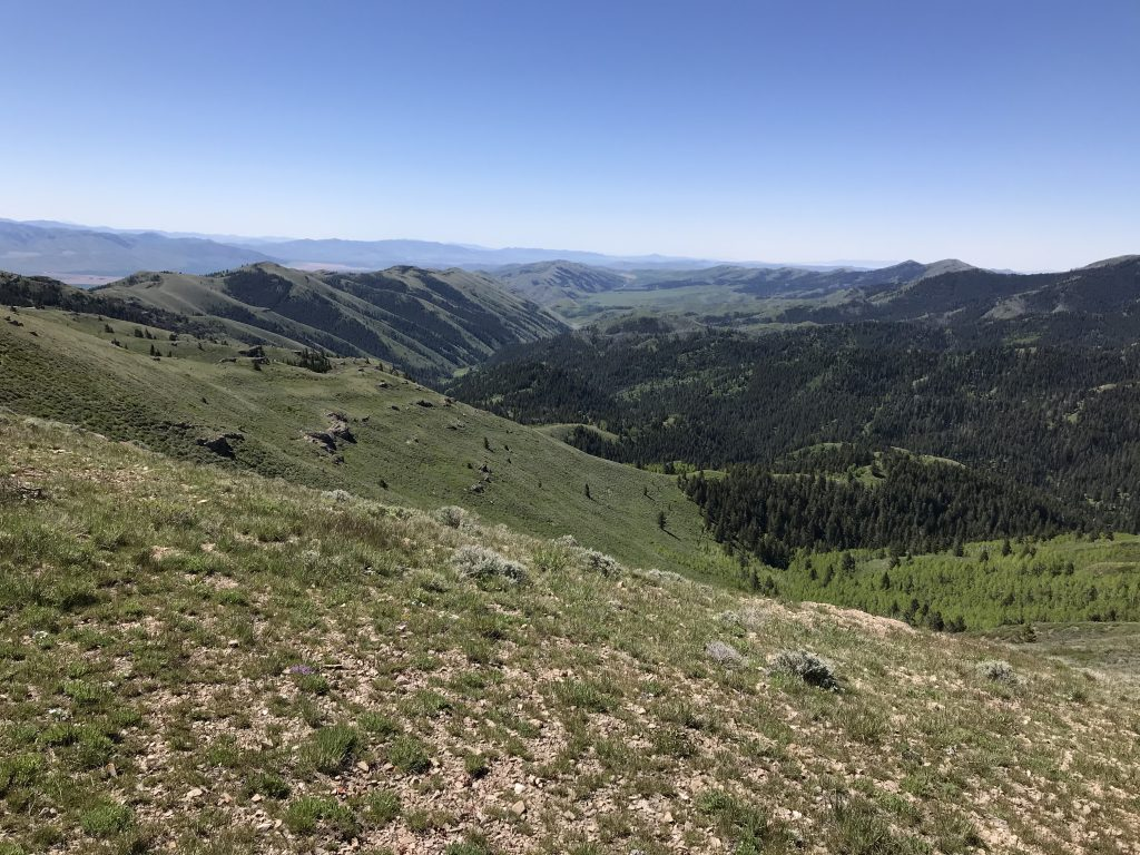 Looking down Bull Canyon from the slopes of Deep Creek Peak.