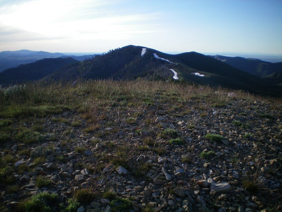 Bell Mountain as viewed from the summit of Peak 7921. Livingston Douglas Photo
