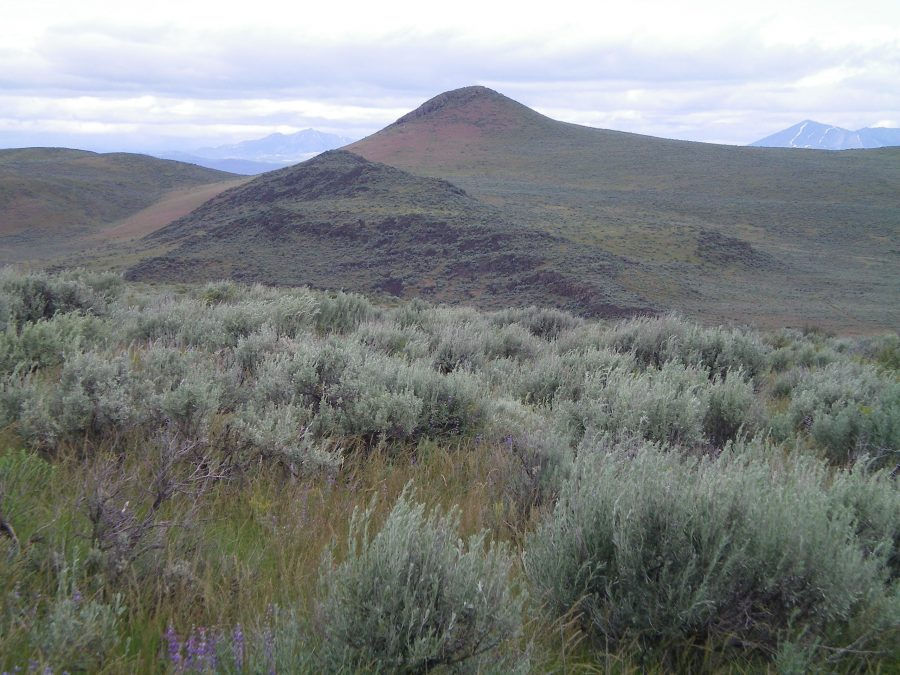 Rattlesnake Butte as viewed from the Northeast Spur of Dinosaur Ridge. The butte is dead-center with the reddish field grass on its South Face. Avoid the rugged ridge section around Point 5105 (the blackish rock and scrub left of center). It's a tedious, difficult affair. Livingston Douglas Photo