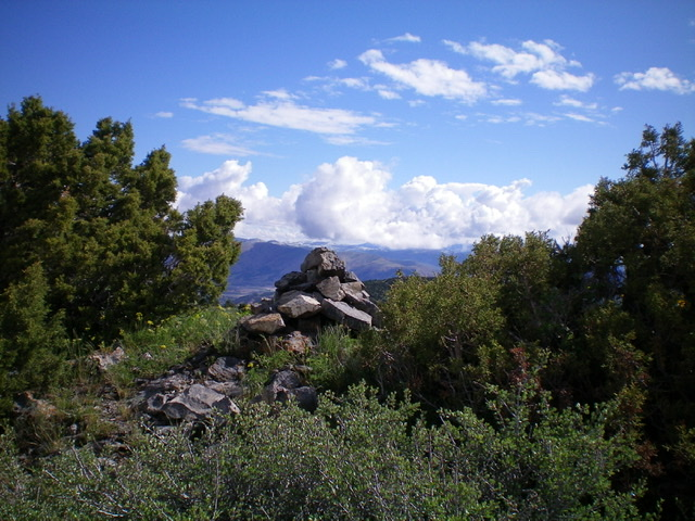 The summit cairn atop Peak 6472 with junipers surrounding it on the narrow ridge crest. Livingston Douglas Photo