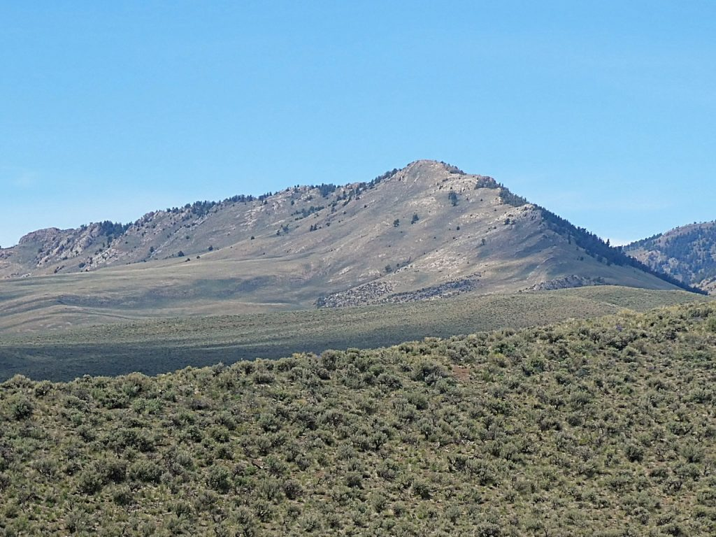 Taylor Mountain viewed from Red Hill. The southeast ridge is on the right.