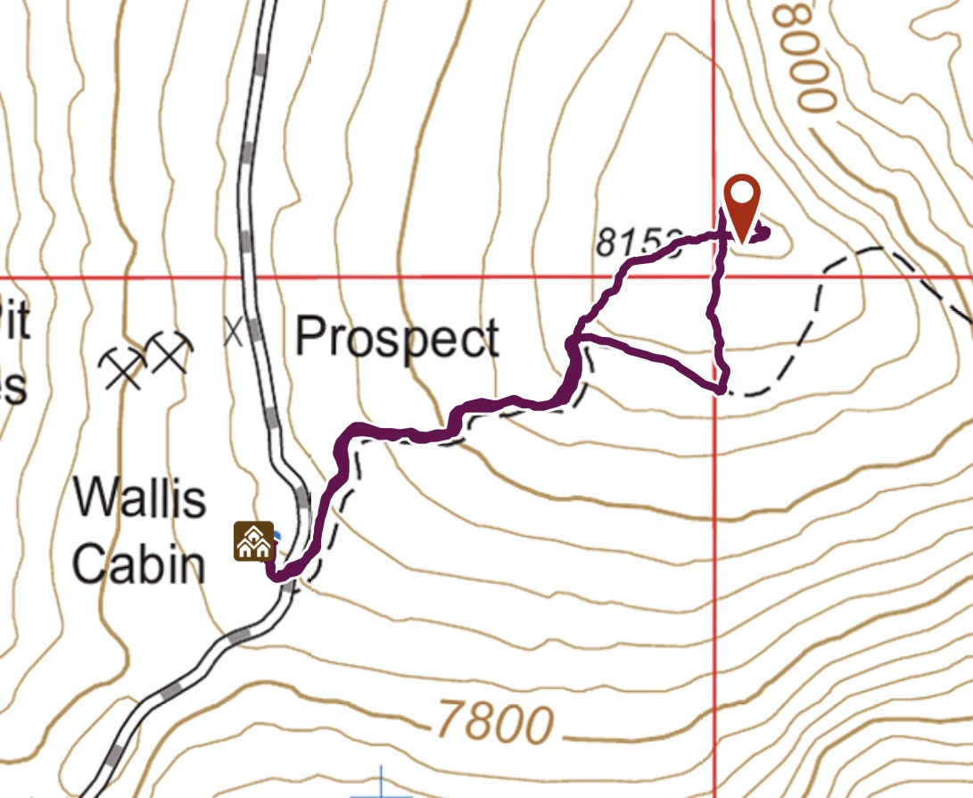 My GPS track from the cabin to the summit covering an easy one mile round trip with 242 feet of gain.