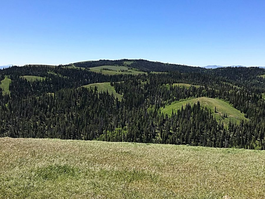 Monument Peak viewed from Trapper Mountain.