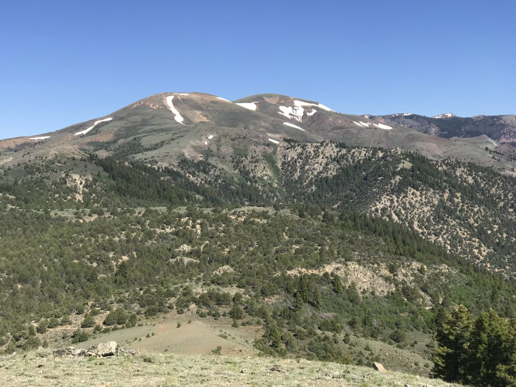 Quicksilver Mountain viewed from Peak 6499.
