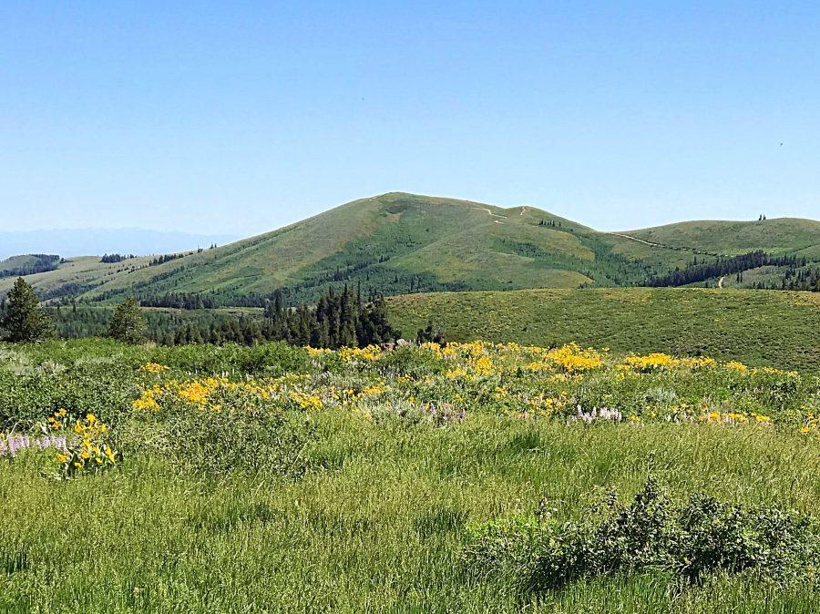 Pike Mountain from Deadline Ridge.