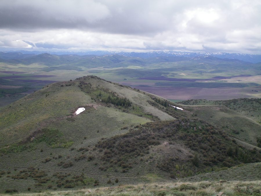 The summit of Peak 6708 as viewed from the top of Peak 6910. The forested hump in the lower right is Point 6550. The summit is left-of-center, farther away, and is mostly in open terrain. Livingston Douglas Photo