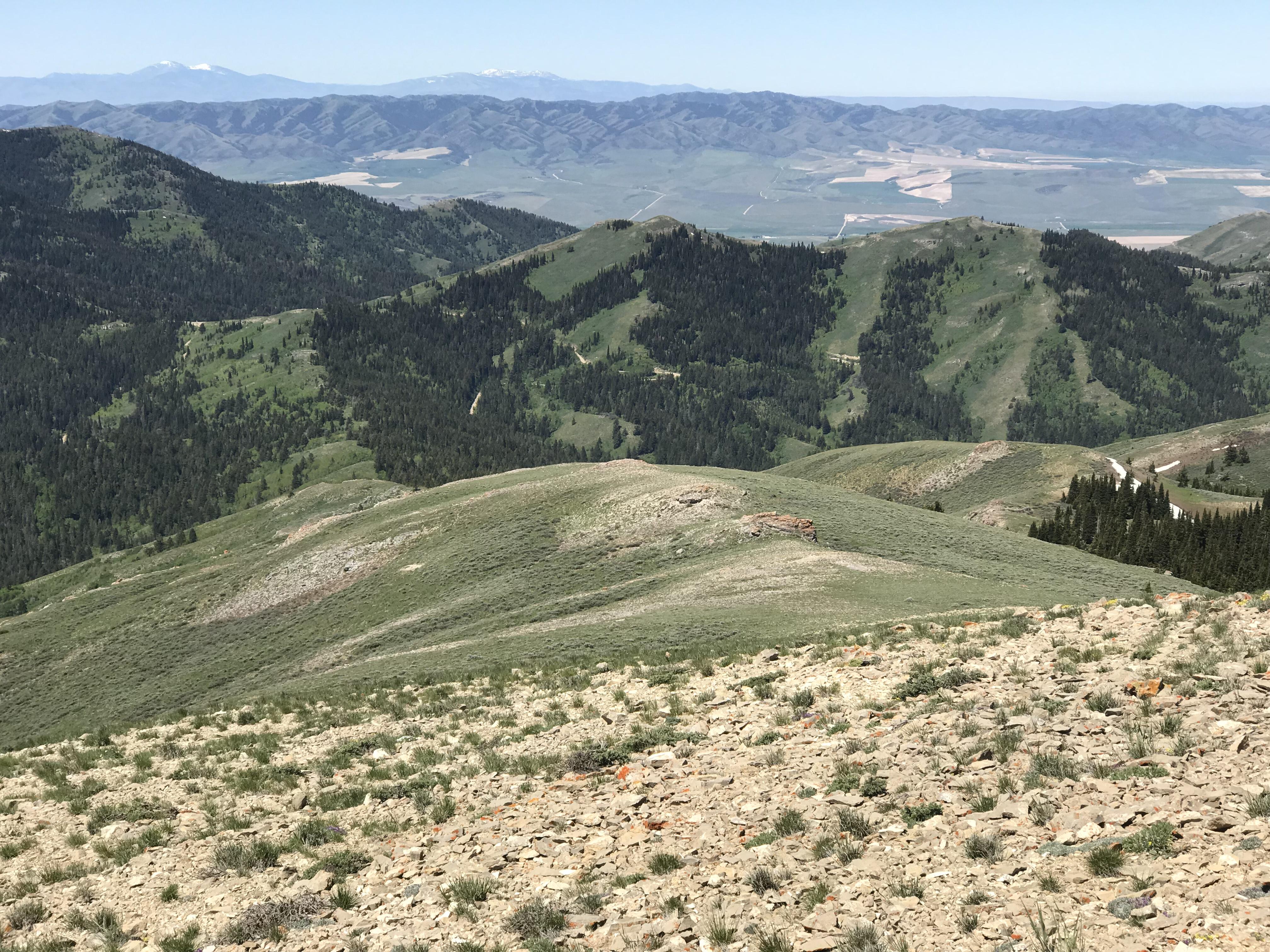 Looking,down the west ridge toward the Big Canyon/Knox Canyon pass.