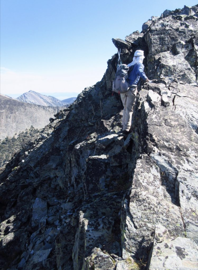 Minimizing exposure by moving to the N side of the ridge in a few places. This picture is taken after the notch between the fore- and main summit. Carl Hamke Photo
