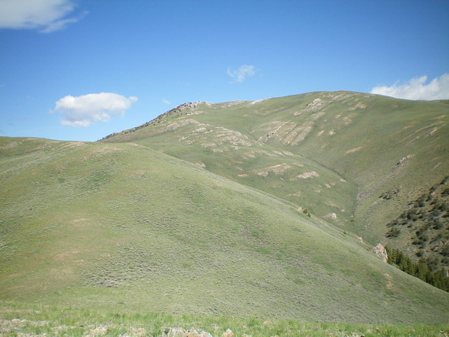 Appendicitis Hill as viewed from the south. Livingston Douglas Photo