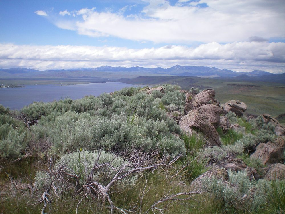 The summit boulders and scrub atop Rattlesnake Butte. Magic Reservoir is in the background. Livingston Douglas Phot