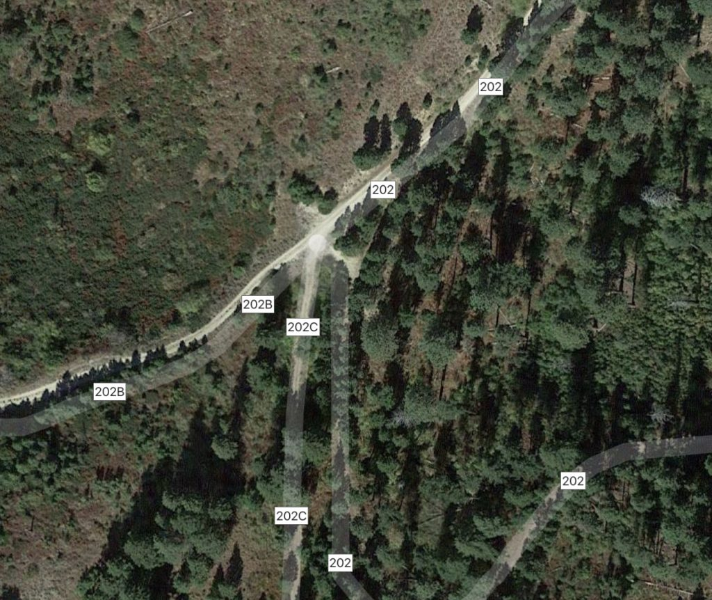 This Google Maps photo show the confusing intersection. You want FS-202C.