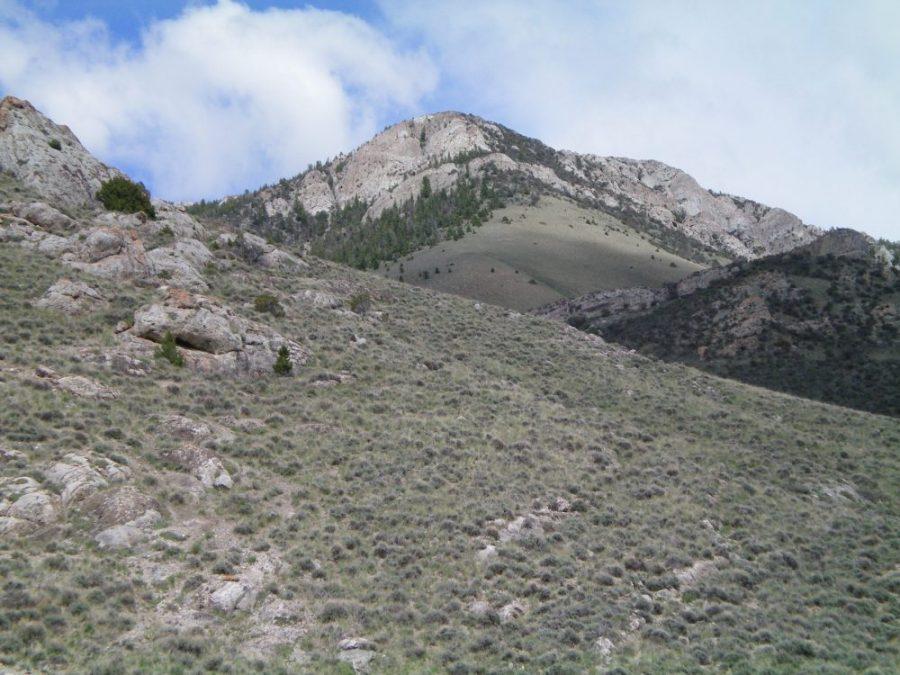 The West Face of Peak 8170. Livingston Douglas Photo