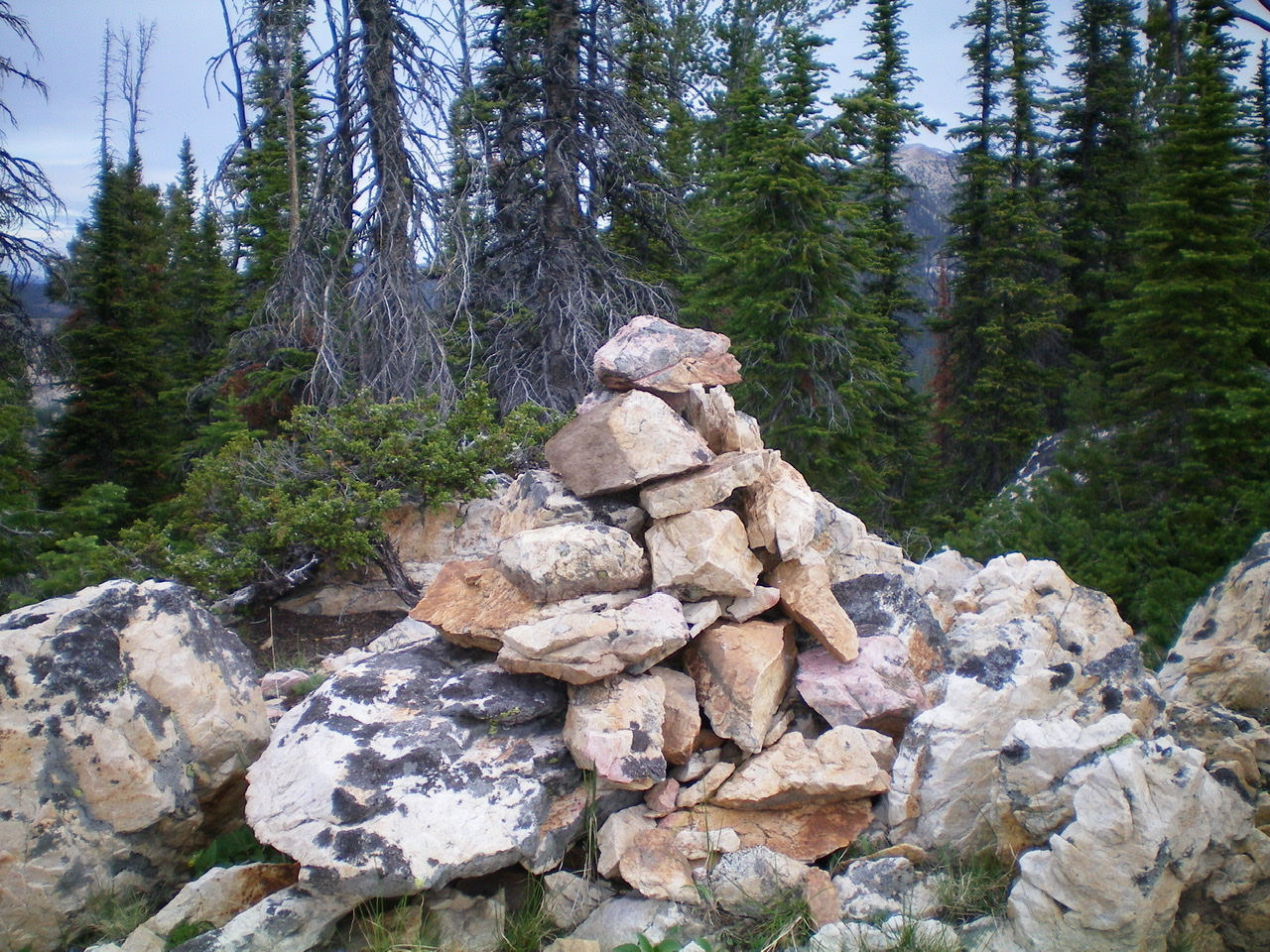 The newly-enhanced summit cairn atop forested Peak 9188. Livingston Douglas Photo