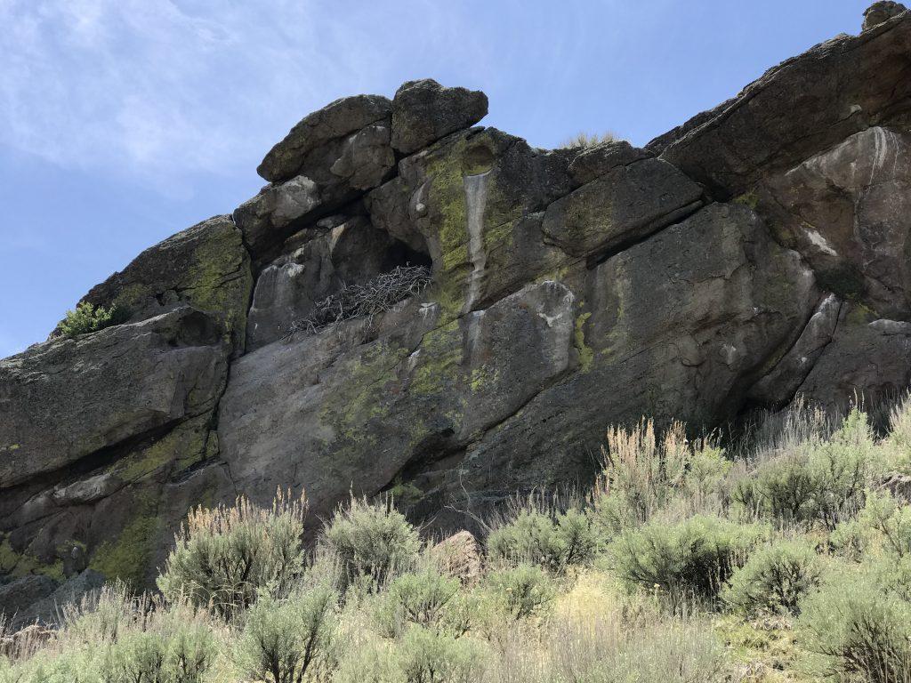 An eagle nest (?) near the summit.