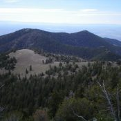 Peak 9300 is the forested ridge hump in the distance (left of center), as viewed from the summit of Bloom Benchmark. Livingston Douglas Photo