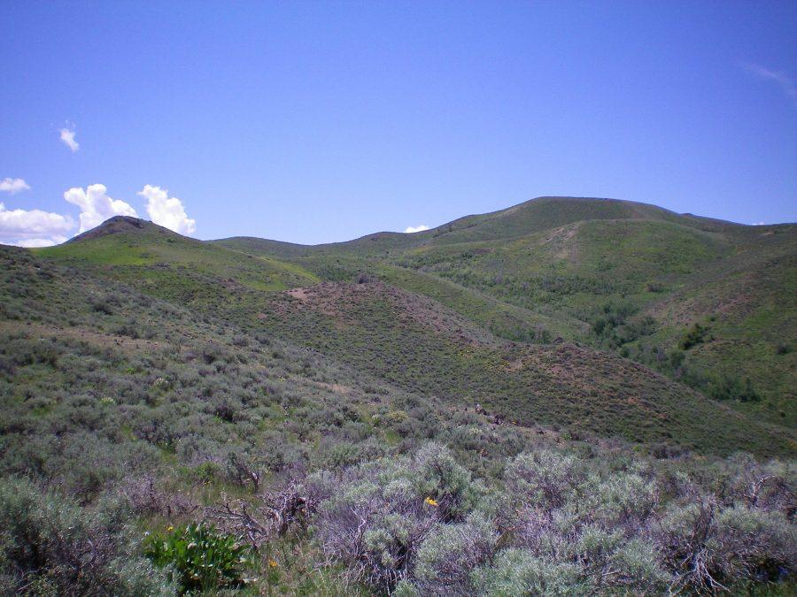 Farther up the Northeast Ridge. The false summit is right of center. The true summit is not visible from here. Livingston Douglas Photo