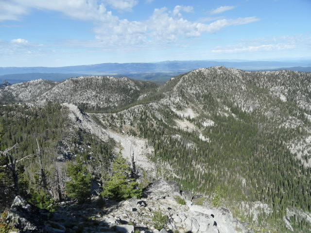 Peak 8300 on the left/center (farther south), 8494 on the right. As viewed from Square Top, with Long Valley in the background. John Platt Photo