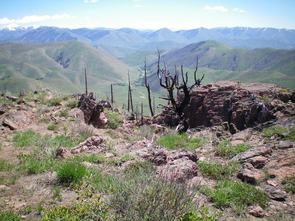View from the summit of Mahoney Butte, looking E at the mouth of Greenhorn Gulch in the distance; the top of the North Couloir is in the foreground, just in front of the rocky outcrop and burnt tree. Livingston Douglas Photo