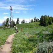 The ridge walk crosses several meadows along tje way. Dace Pahlas Photo